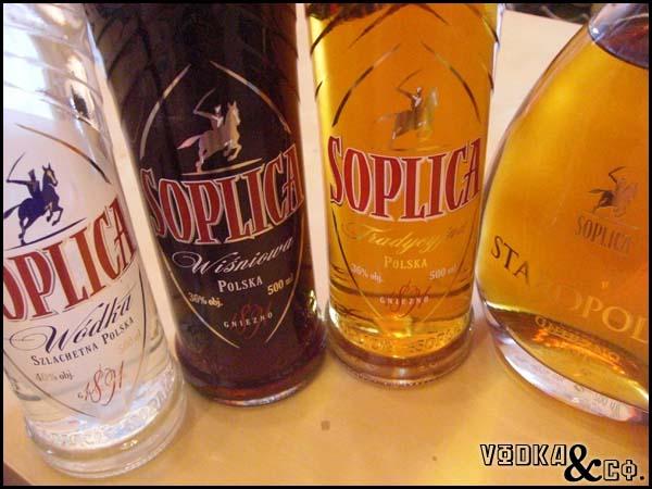 expressions polonaises et autres renseignements pour conforter mes écrits Soplica-family